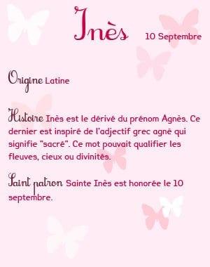 4_ines