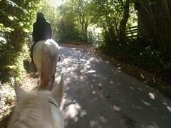 HORSE RIDING 010