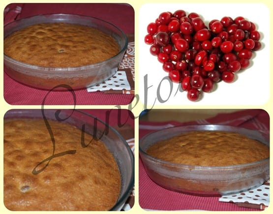 gateau au cranberry