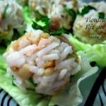 boulettes-de-riz-au-thon_thumb1
