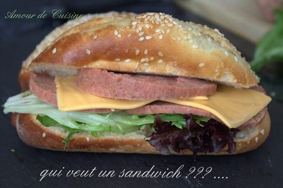 cachir fait maison a la viande hachee 055.CR2