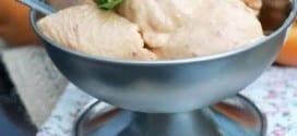 Crème glacée sans sorbetière amandes abricots