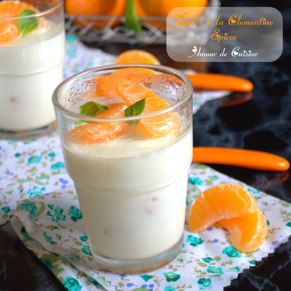 yaourt a la clementine epicee 005.CR2