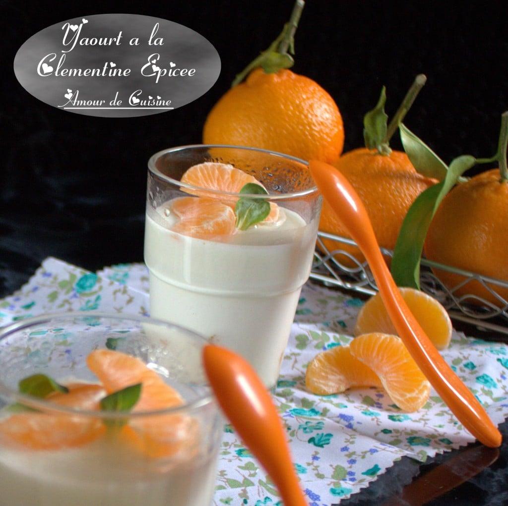 yaourt a la clementine epicee 010.CR2