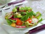 Fattouche salade libanaise au pain grillé