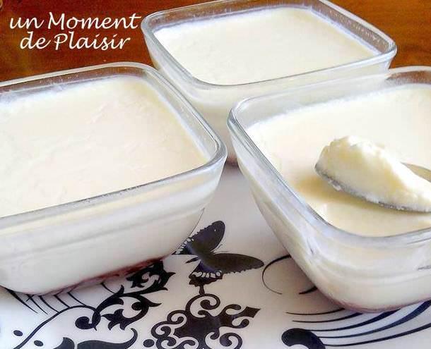 yaourt maison trop liquide avec yaourtiere ventana blog