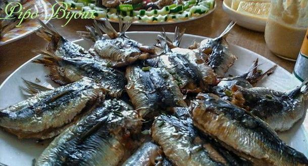 Sardines a la farce et l'huile d'olive au four
