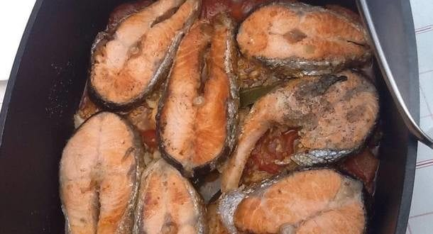 Darnes de saumon a la tomate