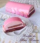 buche framboise chocolat 2