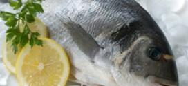 recettes et blogs participants a la ronde autour des poissons