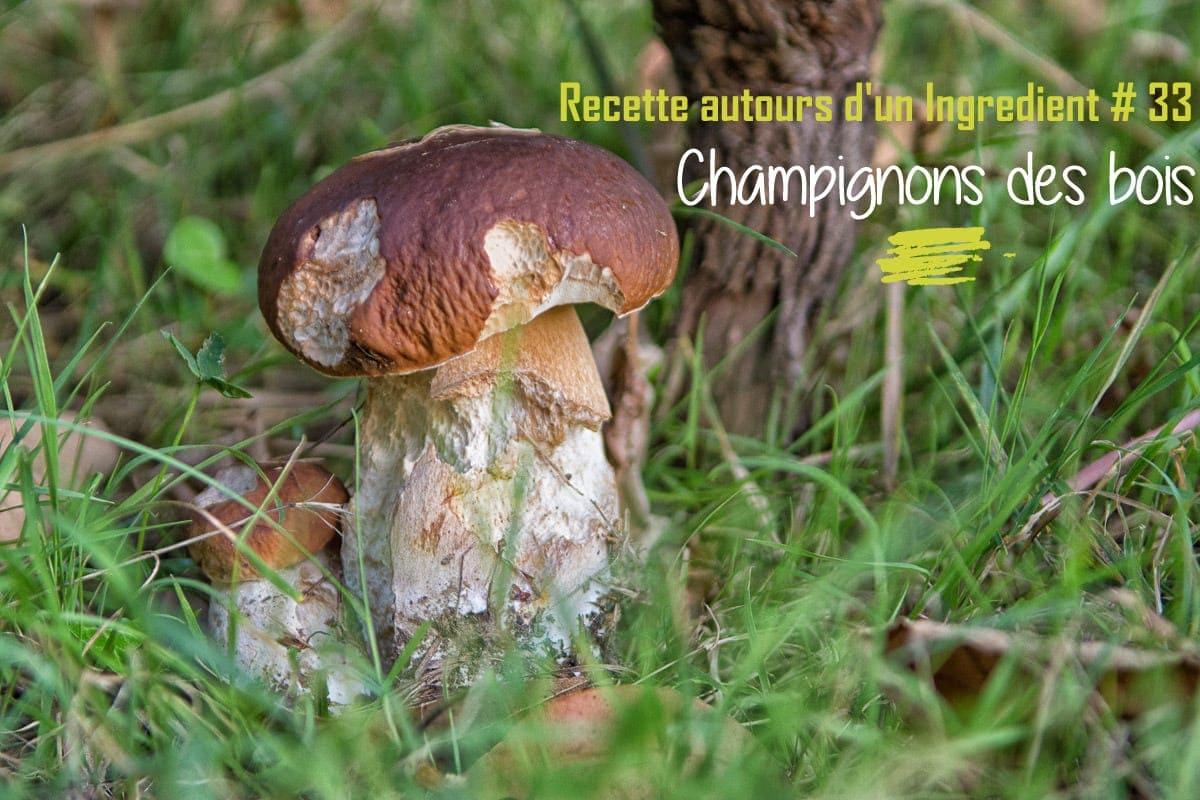 Recette autour d'un ingrédient # 33 : champignons des bois