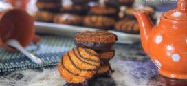 macarons a la noix de coco